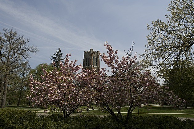 Beaumont Tower on a Spring afternoon.